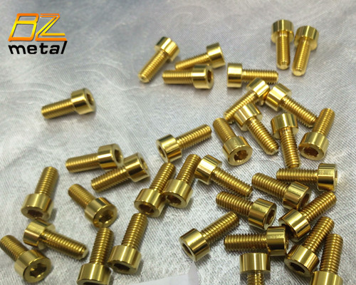 Titanium bolts M5x10mm.jpg